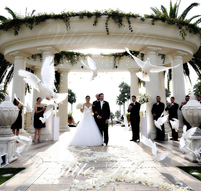 Wedding Ceremony with White Dove Release